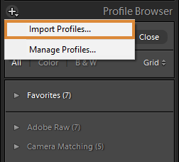 "Option ""Profile importieren"" im Profil-Browser"