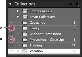Sync icon in Lightroom Classic CC Collection panel