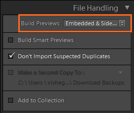 Embedded and Sidecar option in the Import window