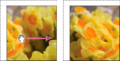 Lightroom Classic CC Dragging a photo in an image cell to reposition it