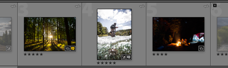 Lightroom Classic CC Photos of a collection in loupe view