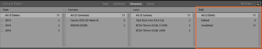 New Metadata category in the Library Filter bar