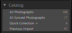 All Synced Photographs collection in the Catalog panel