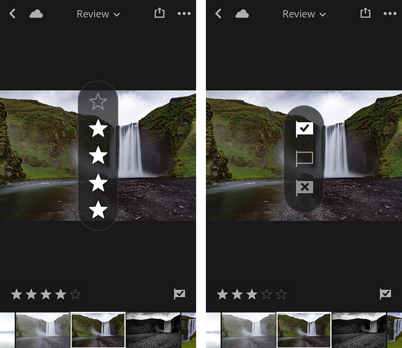 Rate & Review panel in Lightroom for mobile (iOS)