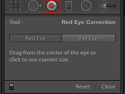 Lightroom red eye correction