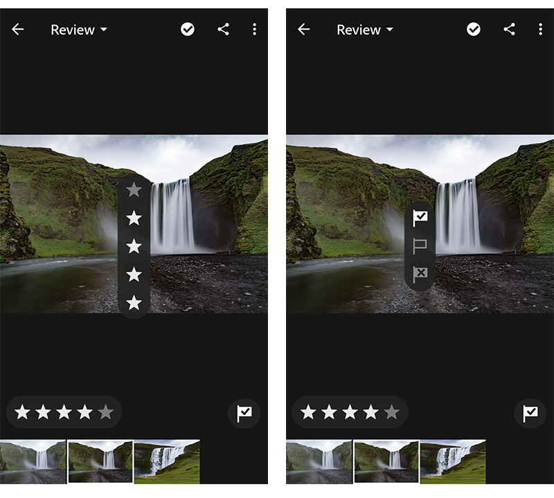 Rate & Review panel in Adobe Photoshop Lightroom CC for mobile (Android)