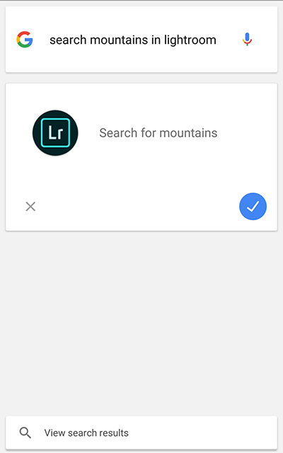 Search Lightroom photos using Google Assistant