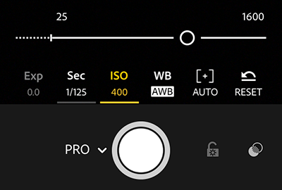 Adjust the ISO value