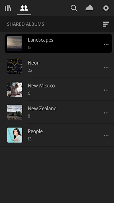 Shared Albums View (iOS)