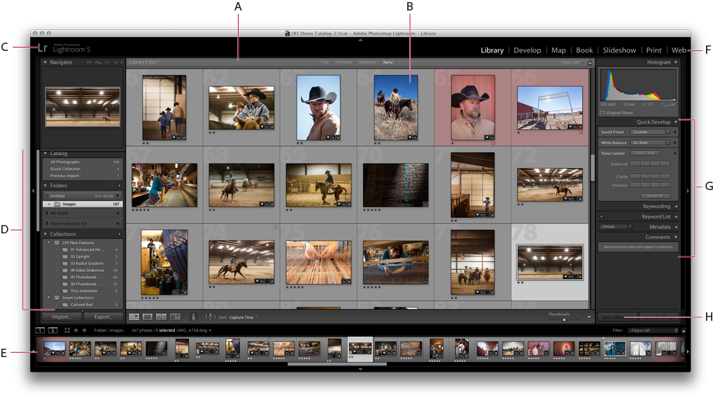 Lightroom Classic CC workspace in the Grid view