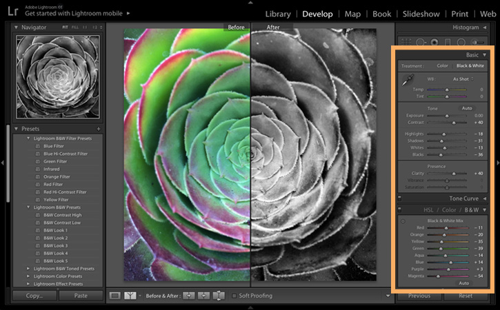 Also adjust the color settings in the hsl color black white adjustment panel by moving the black white mix sliders