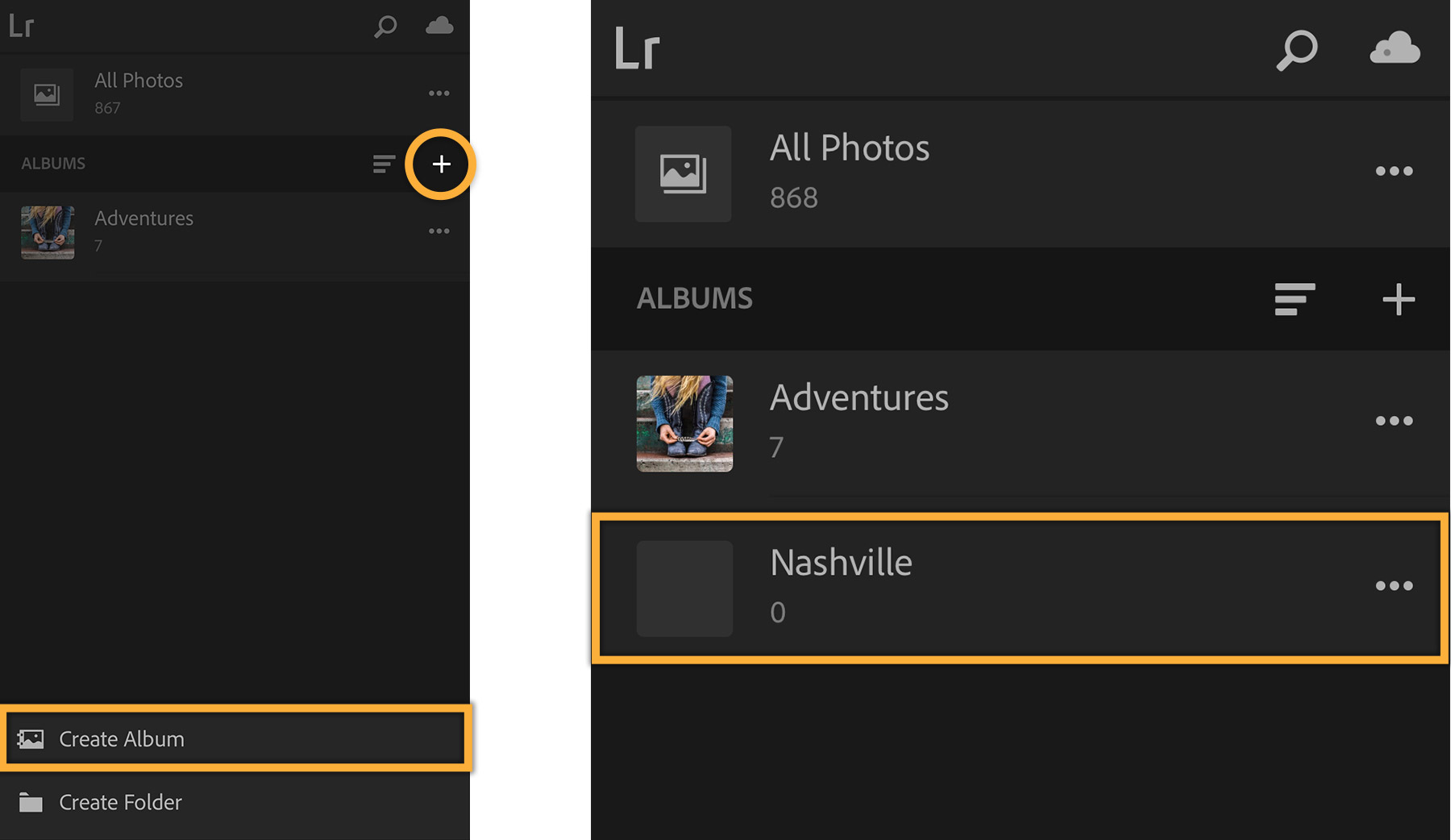 lightroom-mobile-manage-albums_fig2