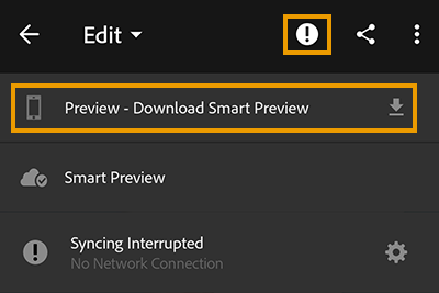 Download a Smart Preview