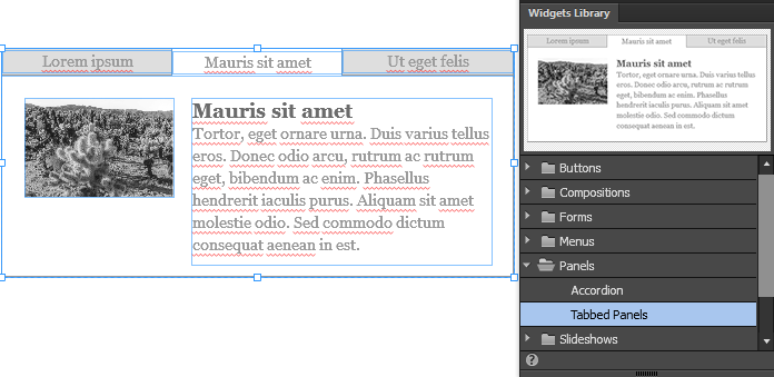 The Tabbed Panel widget displays the default formatting when you drag it onto a page.