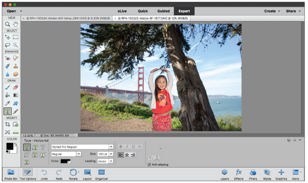 Expert view in Photoshop Elements