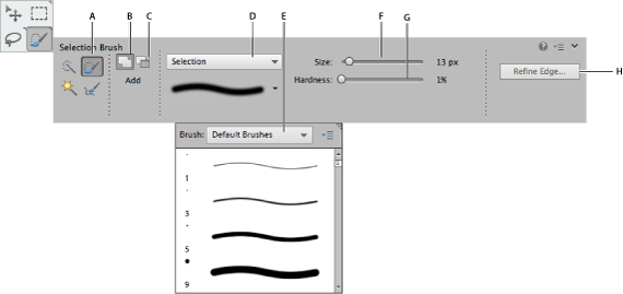 Selection Brush tool options
