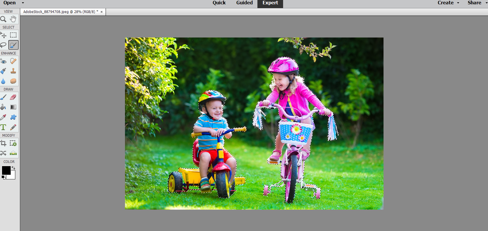 Photoshop Elements automatically selects a subject in your photo