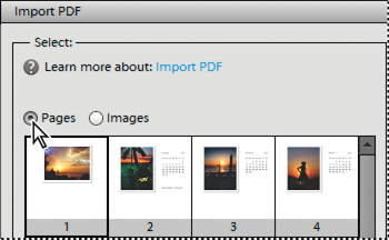 Importing pages from a PDF file