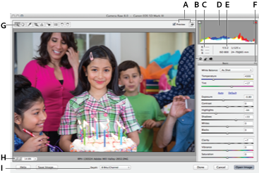 Process camera raw images in Photoshop Elements
