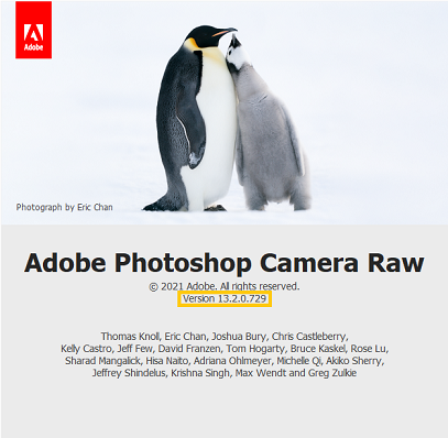About Adobe Photoshop Camera Raw