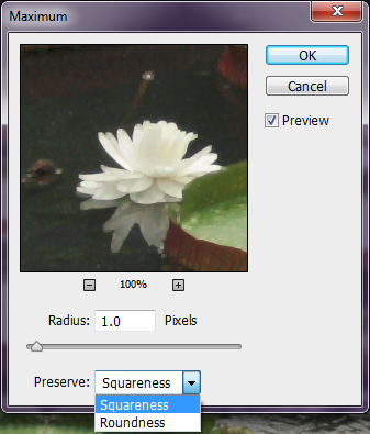 Photoshop filters Preserve squareness or roundness