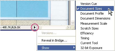 File information view options