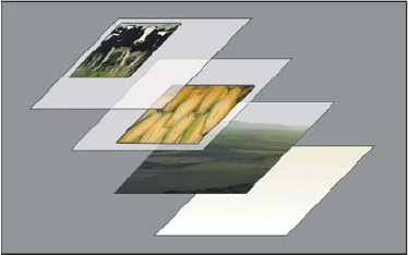 Photoshop - تمثيل الطبقات