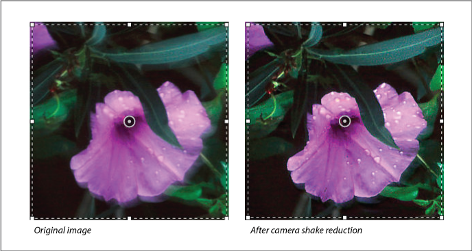 Photoshop Reduce camera shake