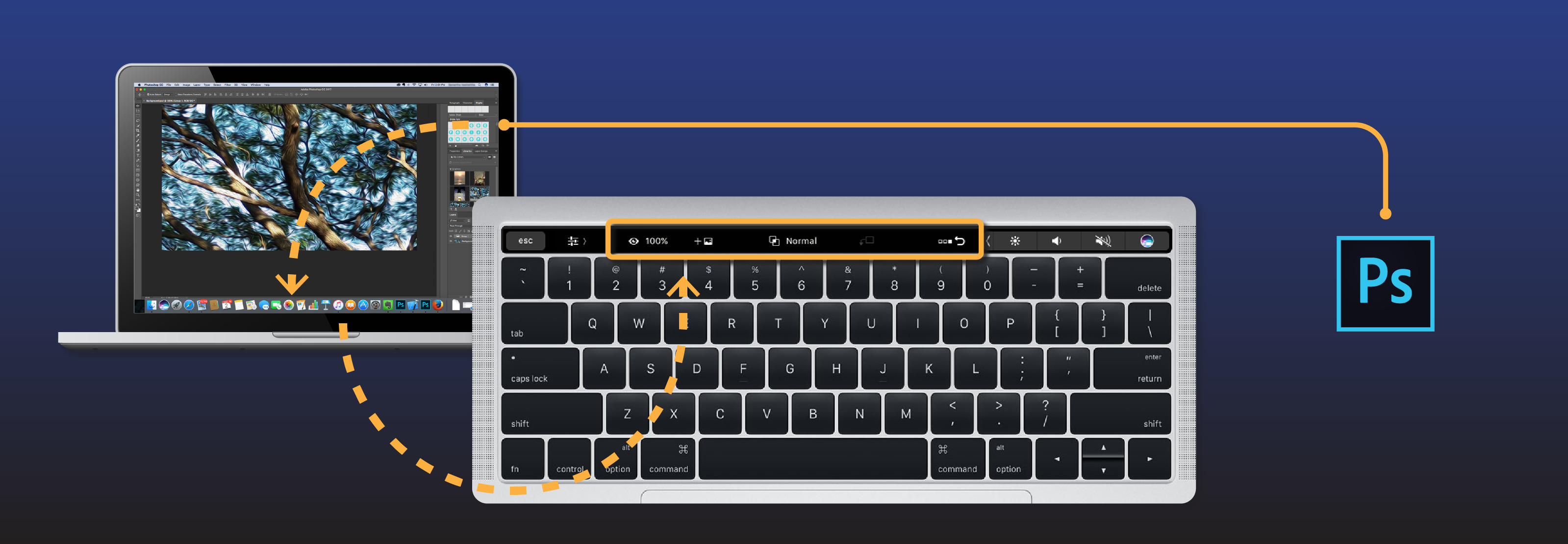 illustration_touch_bar-03