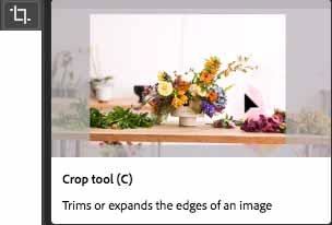 v2_crop-tool-video