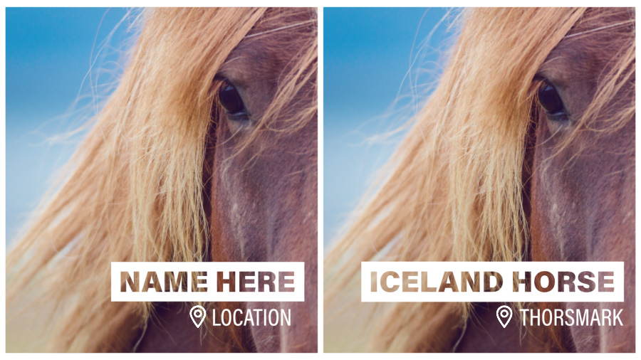 "Side-by-side images of an Icelandic horse, one with placeholder copy in a lower-third motion-graphics template, and the other with the title ""Icelandic Horse, Thorsmork"" in the same template"