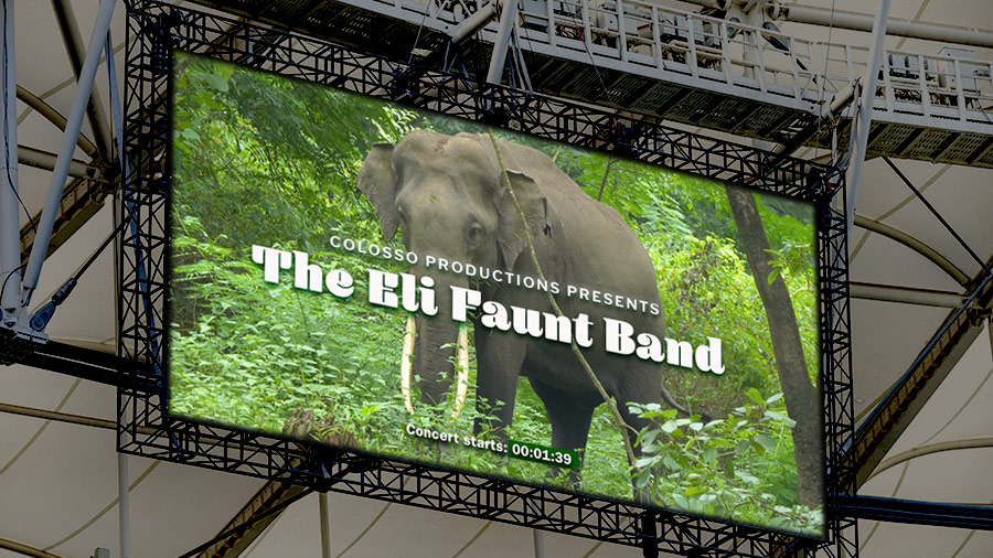 "Digital ad in stadium shows Asian elephant in forest and text overlay: ""Colosso Productions Presents The Eli Faunt Band"""