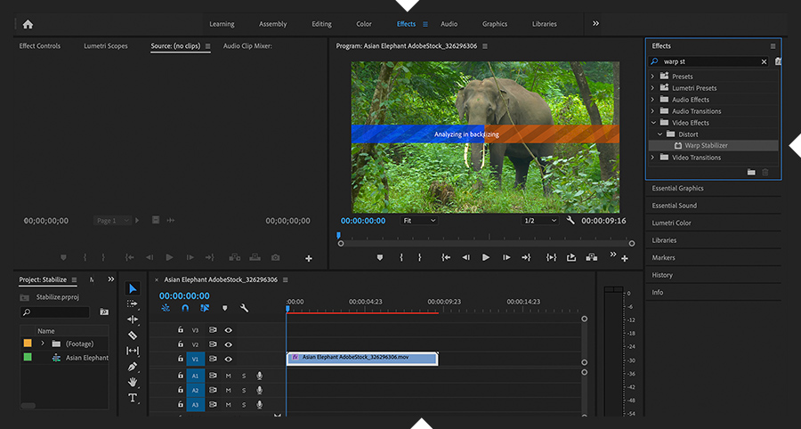 Adobe Premiere Pro shows the Warp Stabilizer effect applied to a clip, and Analyzing and Stabilizing progress indicators