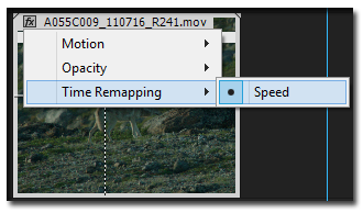 Choosing Time Remapping > Speed