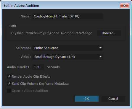 Adobe Audition dialog box