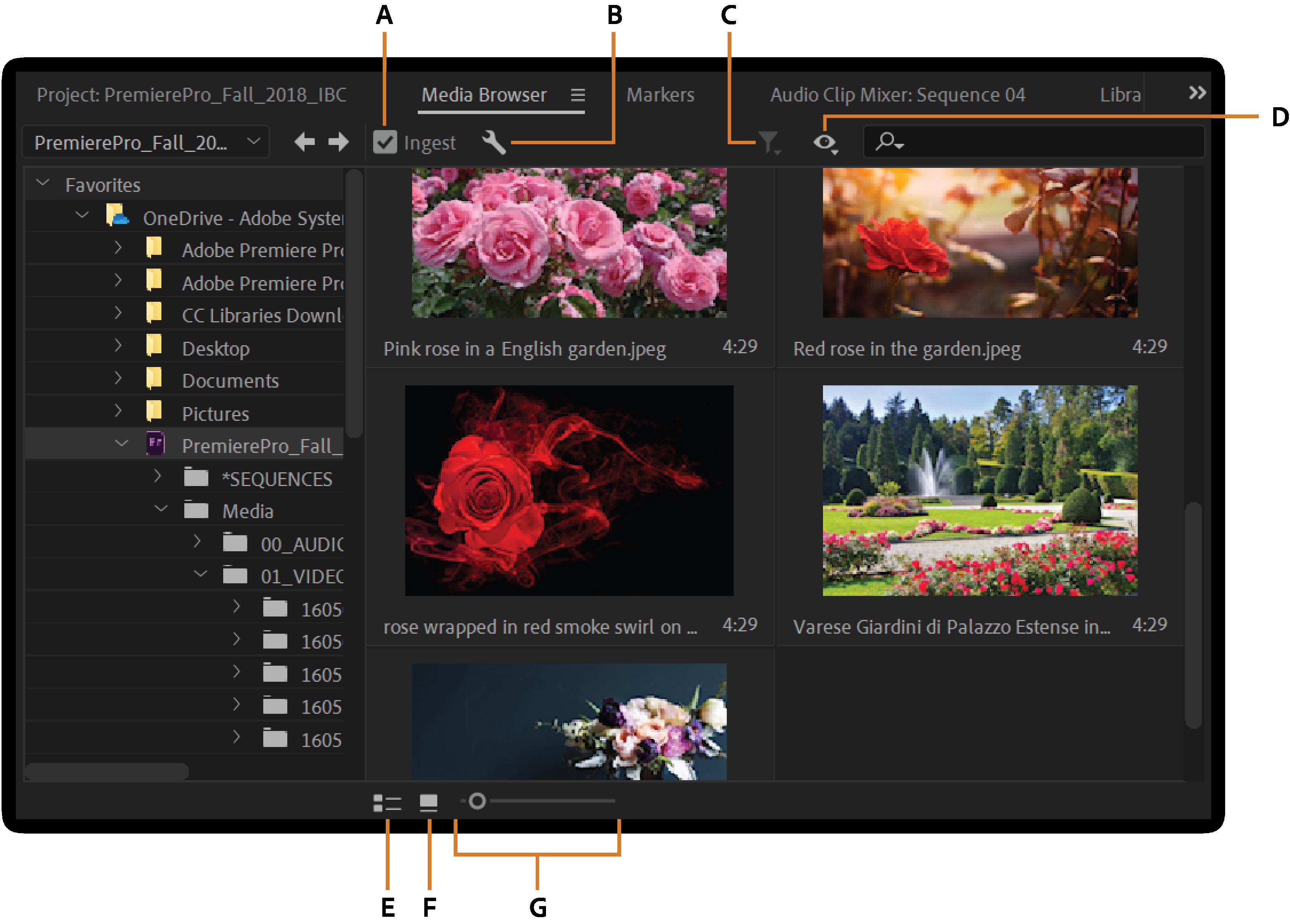 Importing media files into Premiere Pro