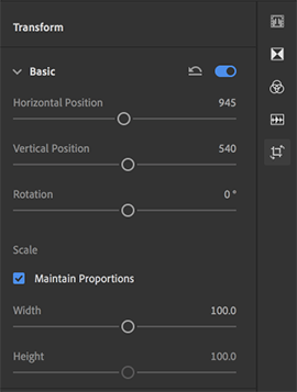 Basic Transform Settings