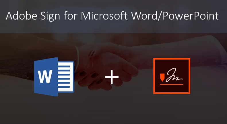Word/PowerPoint-video