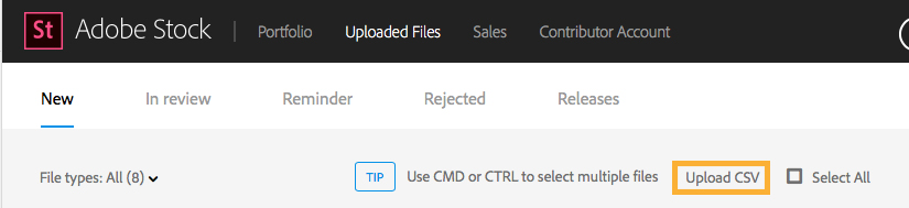 Upload CSV option