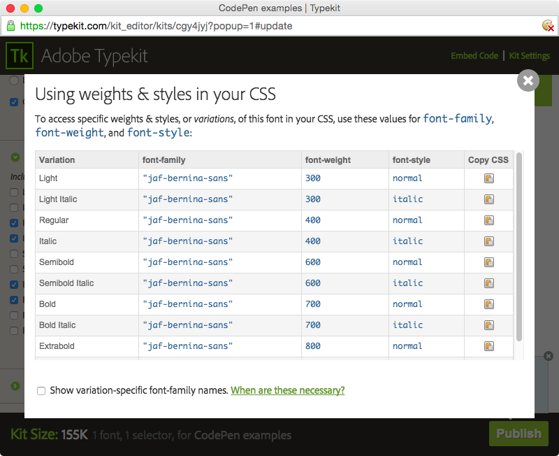 CSS information in the kit editor