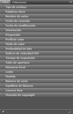 Panel Filtro de Adobe Bridge CC