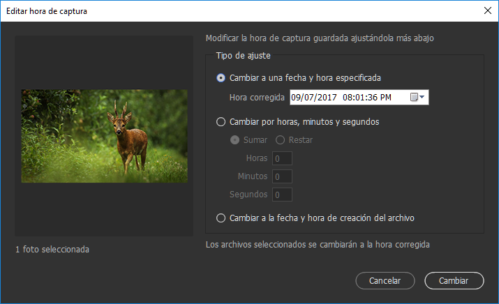 Editar la hora de captura de un archivo JPEG o RAW