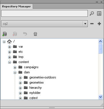 Repository Manager Window