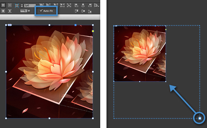 Resize Content In A Frame In Indesign Tutoriales De Adobe Indesign