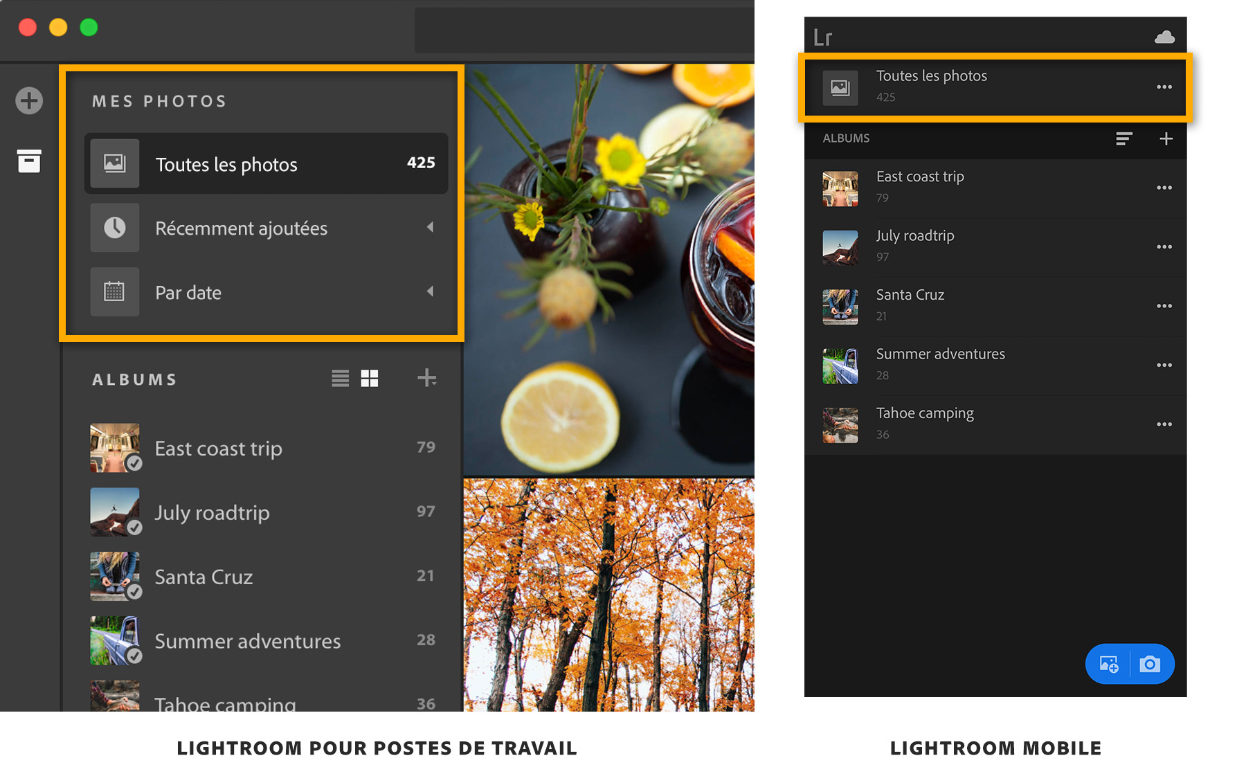 add-organize-photosstep5