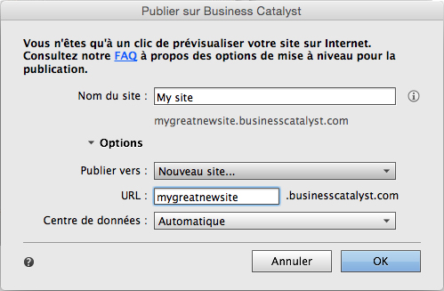 Publication des options du site