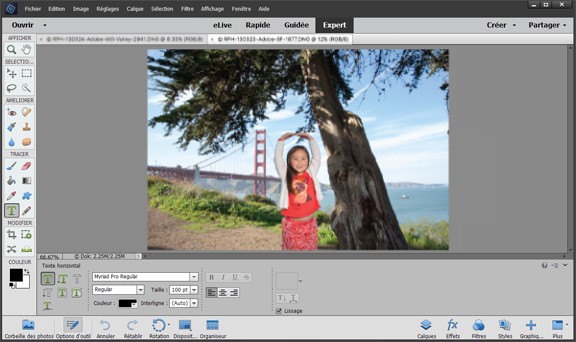 Mode Expert dans Photoshop Elements