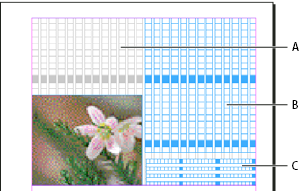 Layout grids in InDesign