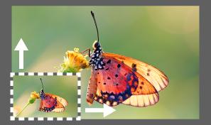Riepilogo delle nuove funzioni della versione di marzo 2021 di Adobe Camera Raw