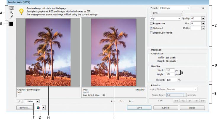 Ottimizzazione Delle Immagini In Photoshop Elements